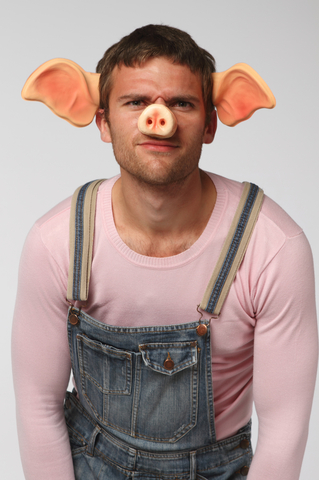http://www.dreamstime.com/stock-photography-man-pig-suit-image23268112